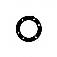 Прокладка BRP 420450080 арт. BR13